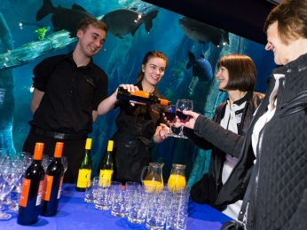 Redman Nicholls Butler Drinks Reception - Endless Oceans