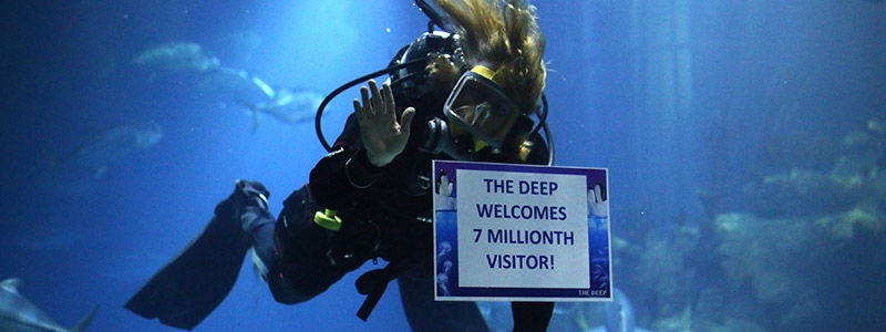 Banner DEEP REACHES 7 MILLION VISITORS