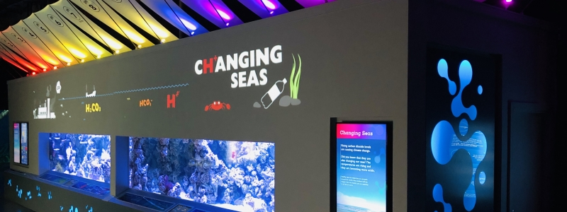 Banner BRINGING OCEAN ACIDIFICATION TO THE SURFACE WITH NEW EXHIBIT