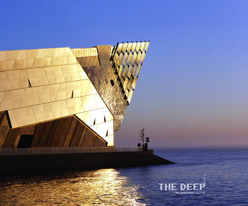 Image result for the deep hull