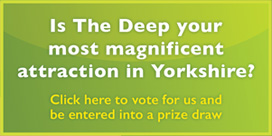 Vote for The Deep to be your most magnificent attraction in Yorkshire
