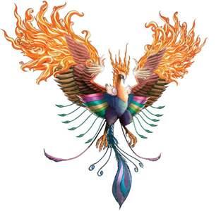 Phoenix Fitness logo